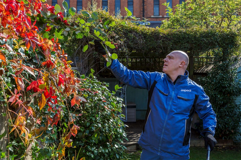 London gardening services