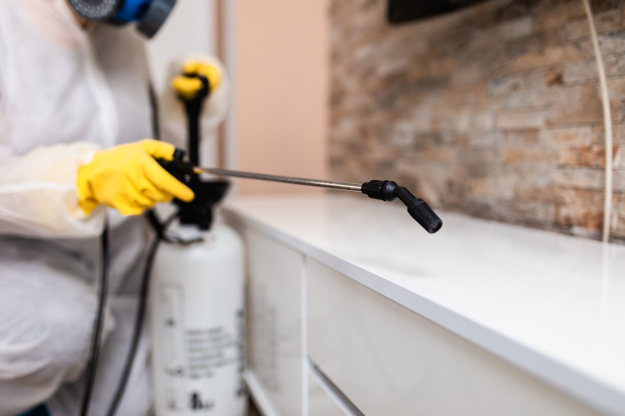 Aspect: Domestic and commercial property sanitising services
